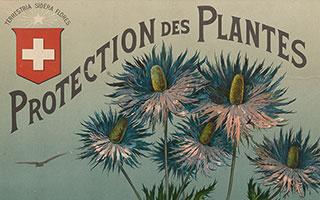 Protection des plantes (Ba 94)